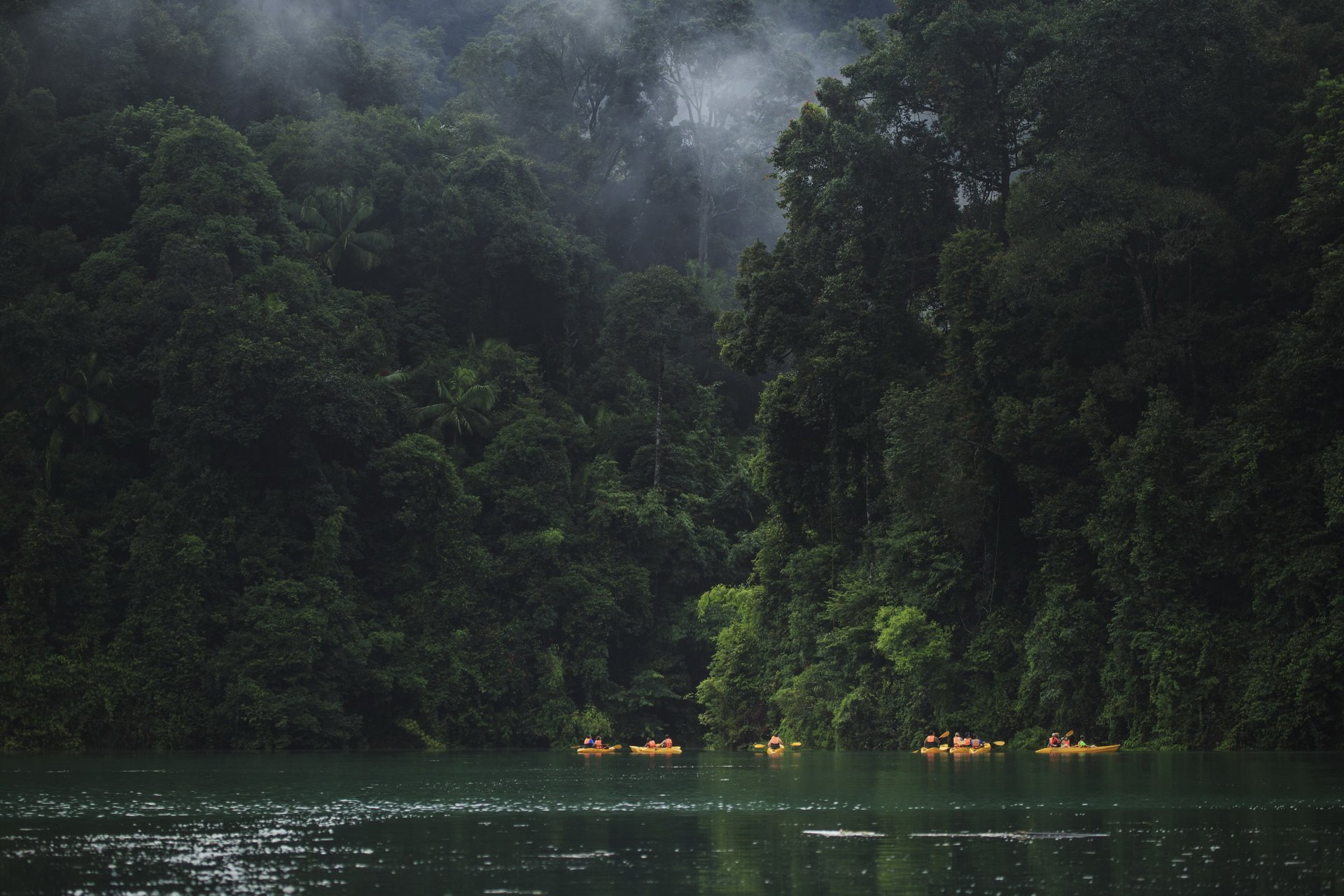 The morning vibe at Khao sok national park where you can paddle out to seek for some wildlife animals