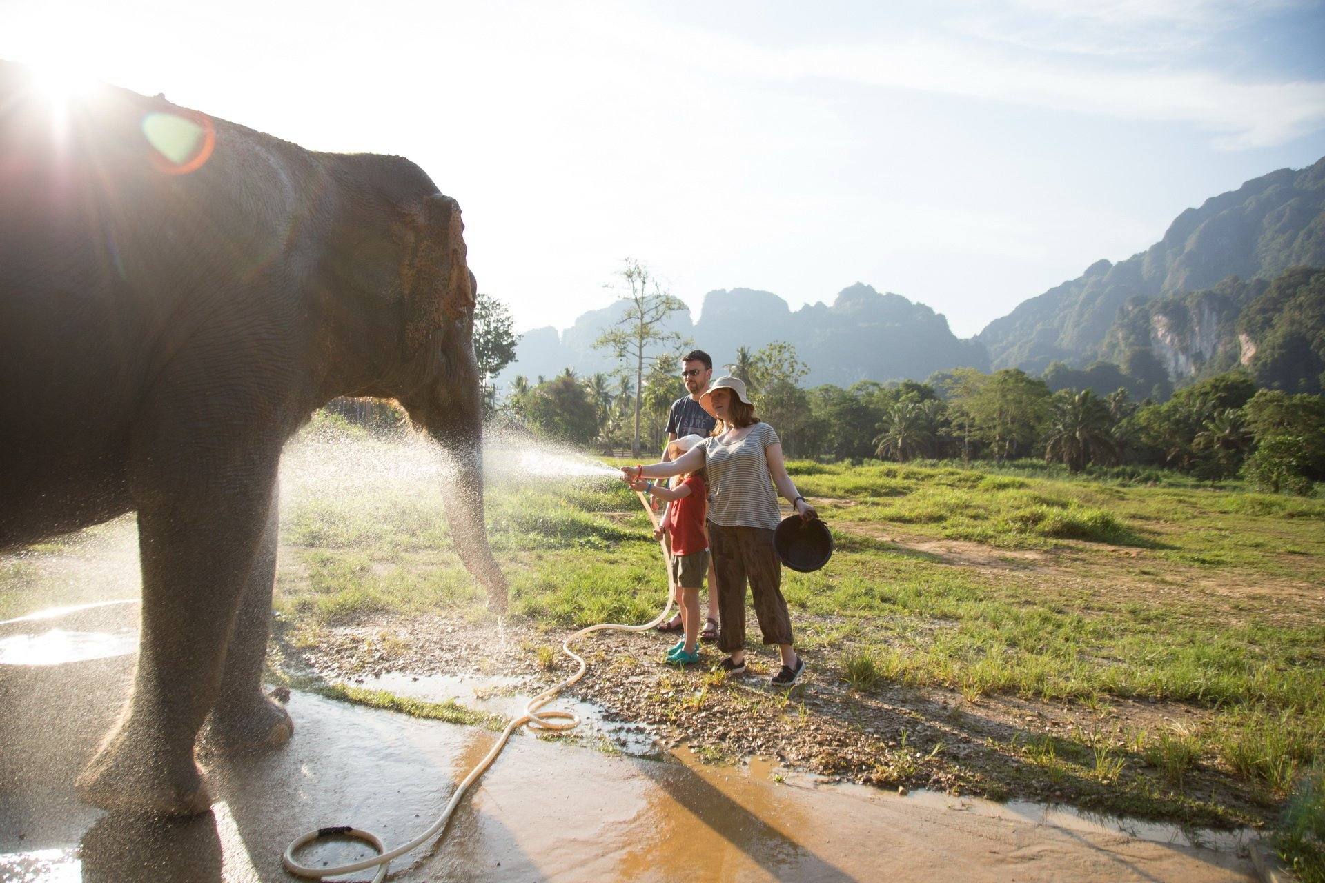a family is playing with an elephant in Khao Sok elephant camp
